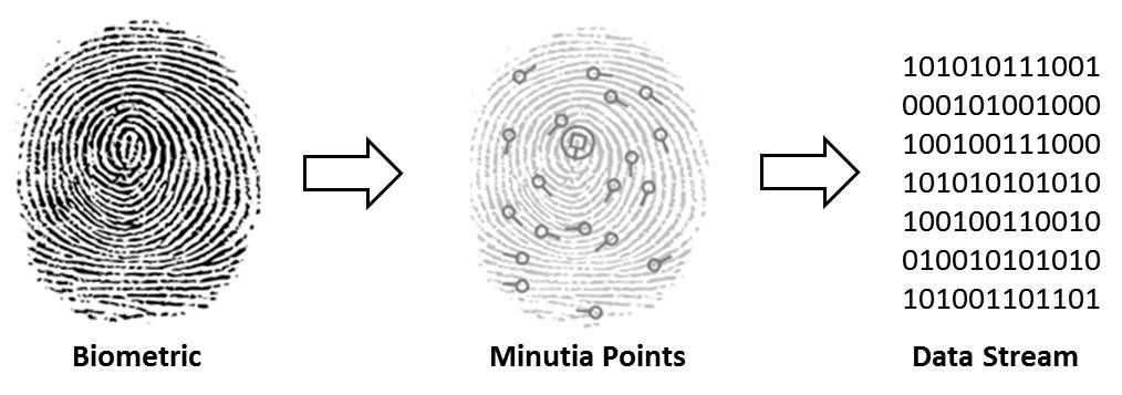 finger print to data stream